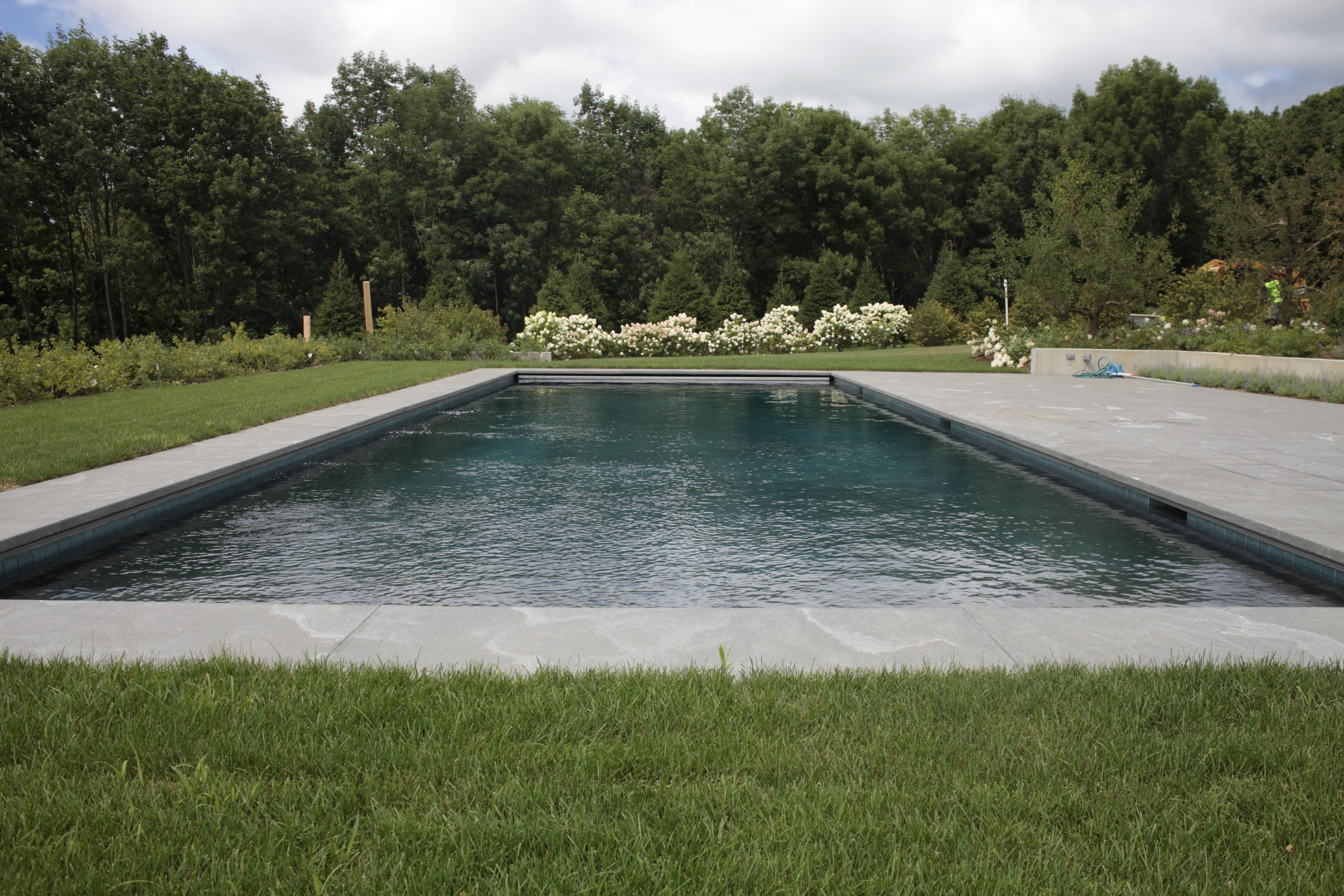 Custom Gunite Pool New York